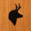 06 – Antelope