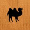 27 – Camel
