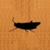 68 – Grasshopper