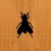 83 – House Fly