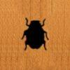 88 – Ladybug
