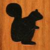 146 – Squirrel