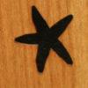 147 – Starfish