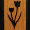 158 – Tulips