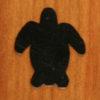 161 – Turtle, loggerhead