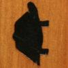 162 – Turtle, side